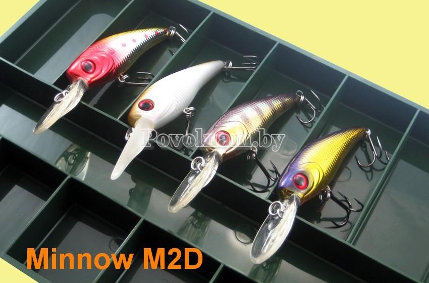 Образ Minnow M2D