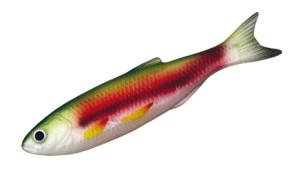 Рыбка BSA 04